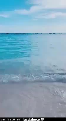 Buon giorno mare